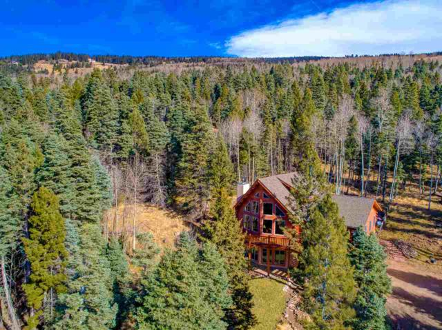 444 El Camino Real, Angel Fire, NM 87710 (MLS #100894) :: Page Sullivan Group | Coldwell Banker Lota Realty
