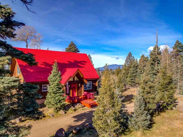 74 Cheerful Way, Angel Fire, NM 87710 (MLS #100912) :: The Chisum Group