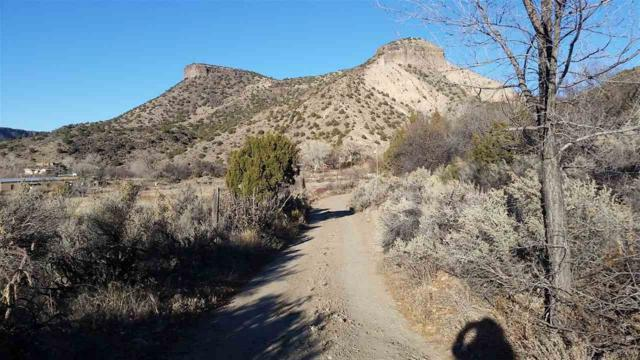 Off Hwy 68 Cieneguilla Road, Pilar, NM 87571 (MLS #100959) :: Page Sullivan Group | Coldwell Banker Lota Realty