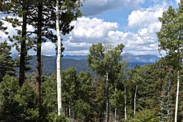 Lot 1575 Luna Dr., Angel Fire, NM 87710 (MLS #100977) :: Page Sullivan Group | Coldwell Banker Lota Realty