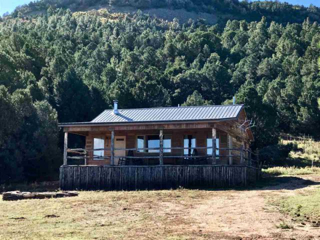 1878 State Hwy 120, Ocate, NM 87734 (MLS #100984) :: The Chisum Group