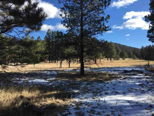 Lot 580 Saints Terrace, Angel Fire, NM 87710 (MLS #100995) :: Page Sullivan Group | Coldwell Banker Lota Realty