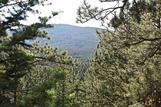 Lot 173 A Vail Overlook, Angel Fire, NM 87710 (MLS #101005) :: The Chisum Group