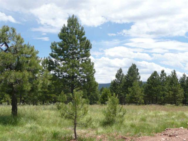 Lot 5 Pine Ridge, Angel Fire, NM 87710 (MLS #101022) :: Page Sullivan Group | Coldwell Banker Lota Realty
