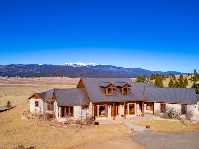 149 Saladon Rd, Angel Fire, NM 87710 (MLS #101031) :: The Chisum Group