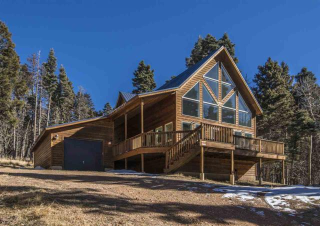 17 Pleasant Valley Overlook, Angel Fire, NM 87710 (MLS #101040) :: The Chisum Group