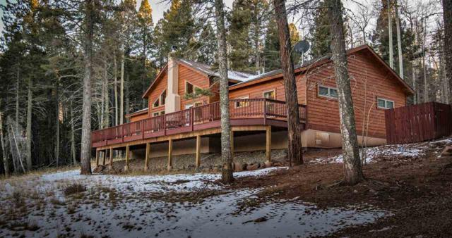 342 Back Basin Rd., Angel Fire, NM 87710 (MLS #101042) :: The Chisum Group