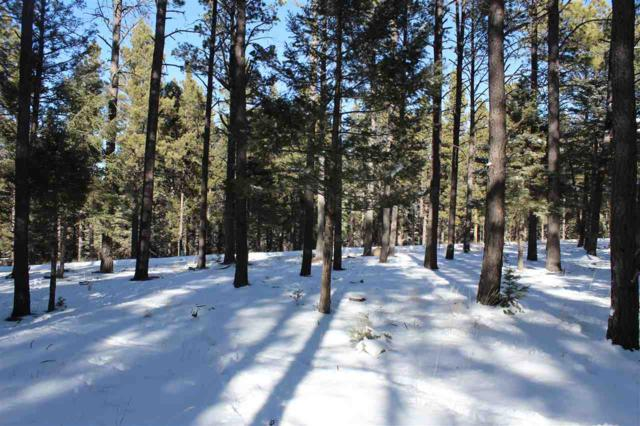 128A San Andres Drive, Angel Fire, NM 87710 (MLS #101065) :: Page Sullivan Group | Coldwell Banker Lota Realty
