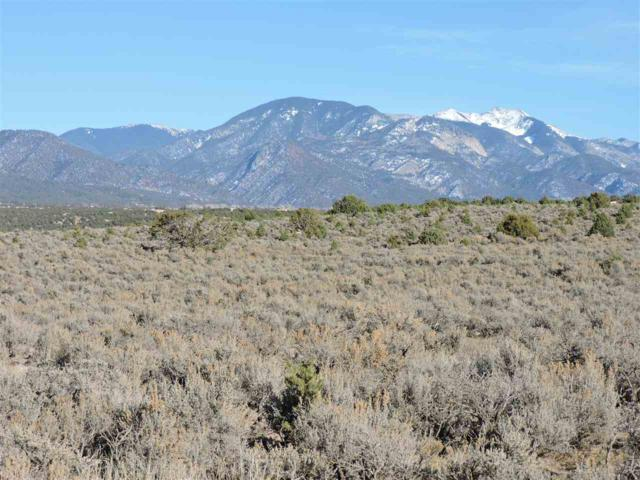 Los Rios Road, Arroyo Hondo, NM 87513 (MLS #101077) :: Angel Fire Real Estate & Land Co.