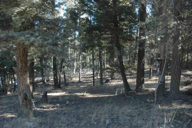 Lot 170 Taos Dr., Angel Fire, NM 87710 (MLS #101083) :: Page Sullivan Group | Coldwell Banker Lota Realty