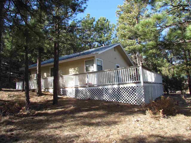 49 Jaybird Lane, Ute Park, NM 87749 (MLS #101113) :: Page Sullivan Group | Coldwell Banker Lota Realty