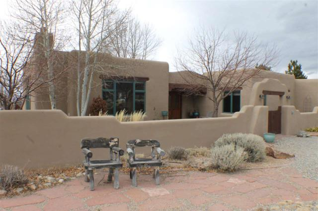 176 Hwy 230, Taos, NM 87514 (MLS #101119) :: Page Sullivan Group | Coldwell Banker Lota Realty