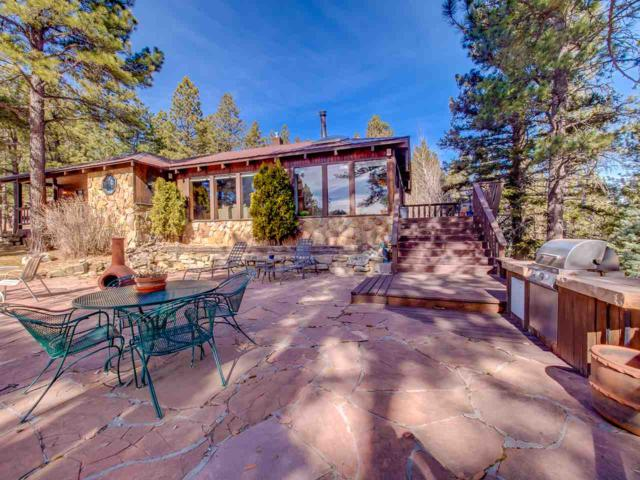 2941 Hwy 434, Angel Fire, NM 87710 (MLS #101128) :: The Chisum Group