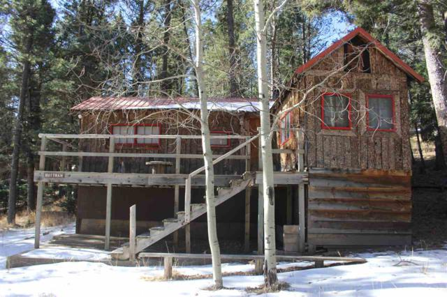 17 Road 8, Idlewild, NM 87718 (MLS #101196) :: The Chisum Group