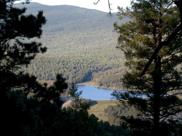 Lot 406A Vail Loop, Angel Fire, NM 87710 (MLS #101200) :: The Chisum Realty Group