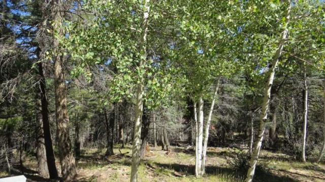 Lot 1175 Buena Vista Drive, Angel Fire, NM 87710 (MLS #101209) :: Angel Fire Real Estate & Land Co.
