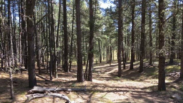 Lot 72 San Juan Drive, Angel Fire, NM 87710 (MLS #101210) :: Page Sullivan Group | Coldwell Banker Lota Realty