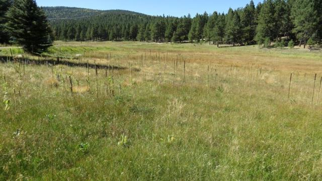 Lot 140 San Andres Drive, Angel Fire, NM 87710 (MLS #101211) :: Page Sullivan Group | Coldwell Banker Mountain Properties