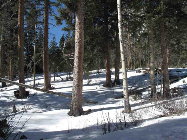 301 Sleepy Hollow Road, Red River, NM 87558 (MLS #101219) :: The Chisum Group