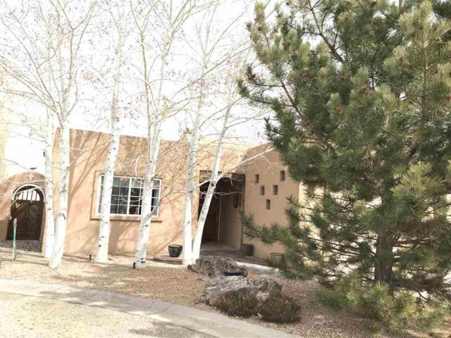 110 Vista Lane, Taos, NM 87571 (MLS #101246) :: Page Sullivan Group   Coldwell Banker Lota Realty