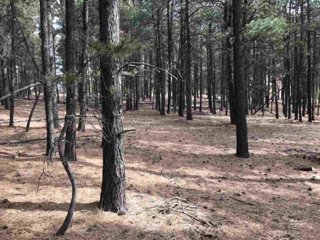 White Sands Circle, Angel Fire, NM 87710 (MLS #101247) :: Page Sullivan Group | Coldwell Banker Lota Realty