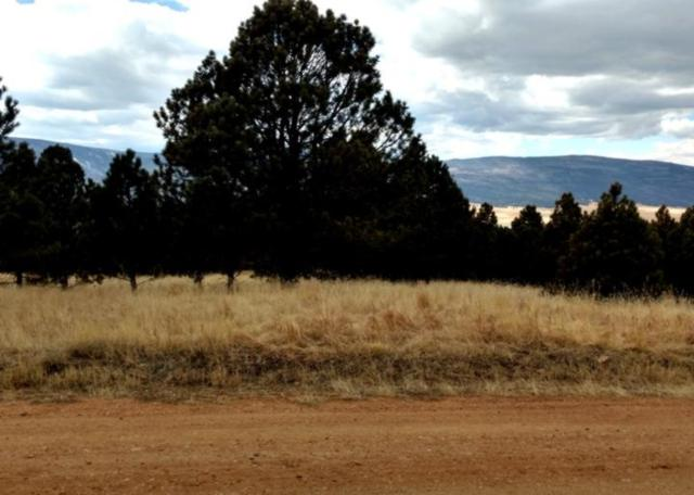 Tract 1-A Pine Rd., Angel Fire, NM 87710 (MLS #101248) :: The Chisum Group