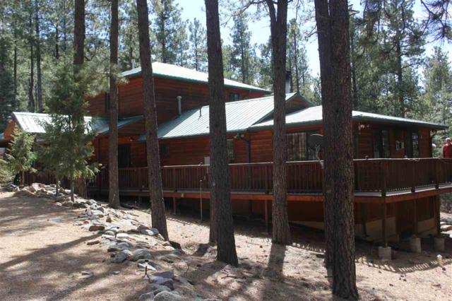 114 Cr A044, Guadalupita, NM 87722 (MLS #101249) :: Page Sullivan Group | Coldwell Banker Lota Realty
