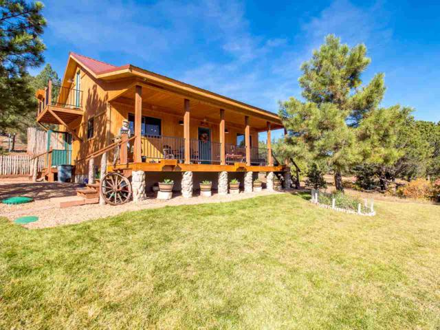 507 Cr A021, Guadalupita, NM 87722 (MLS #101286) :: The Chisum Realty Group