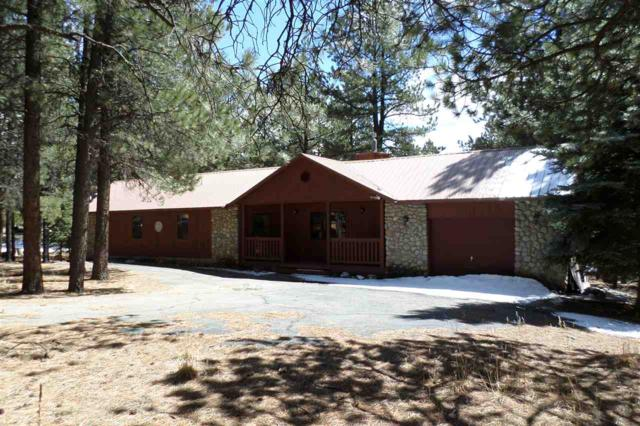 17 Alamagordo Terrace, Angel Fire, NM 87710 (MLS #101306) :: Page Sullivan Group | Coldwell Banker Lota Realty