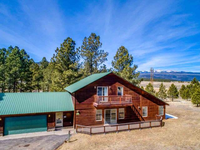 19 Cortez Terrace, Angel Fire, NM 87710 (MLS #101312) :: Page Sullivan Group | Coldwell Banker Lota Realty