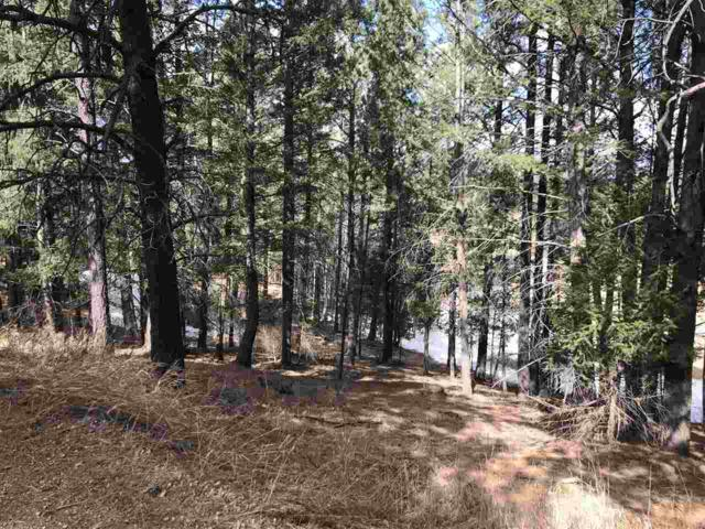 Mammoth Mountain Road, Angel Fire, NM 87710 (MLS #101319) :: Page Sullivan Group   Coldwell Banker Lota Realty