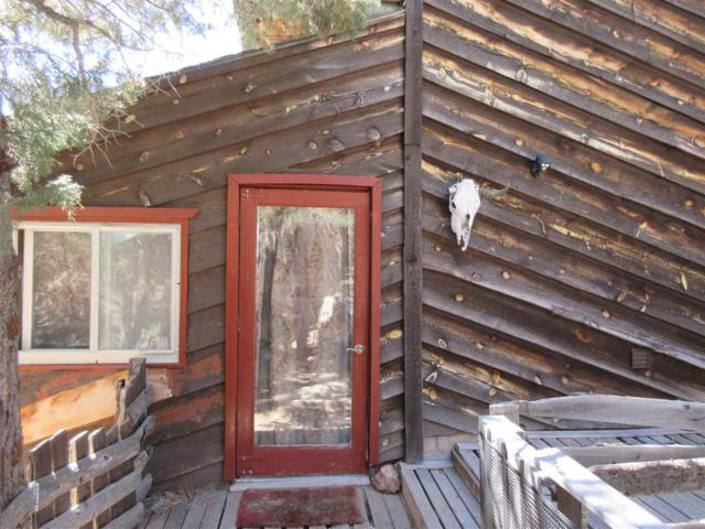 21 Lower Pinabete Rd, Questa, NM 87556 (MLS #101340) :: Page Sullivan Group | Coldwell Banker Lota Realty