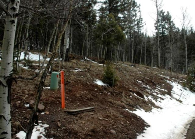 Lot 423 El Camino Real, Angel Fire, NM 87710 (MLS #101361) :: Page Sullivan Group | Coldwell Banker Lota Realty