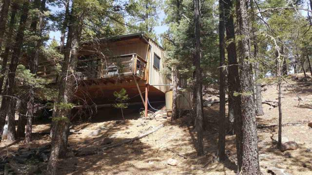 74 Rd 9, Eagle Nest, NM 87718 (MLS #101415) :: The Chisum Group