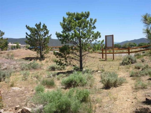 Canon West, Taos, NM 87571 (MLS #101431) :: Page Sullivan Group | Coldwell Banker Lota Realty