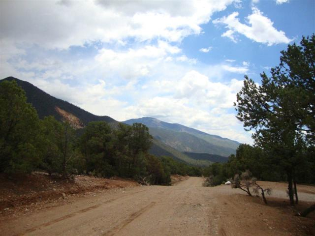 Lot 47 Mva, Questa, NM 87556 (MLS #101435) :: Angel Fire Real Estate & Land Co.