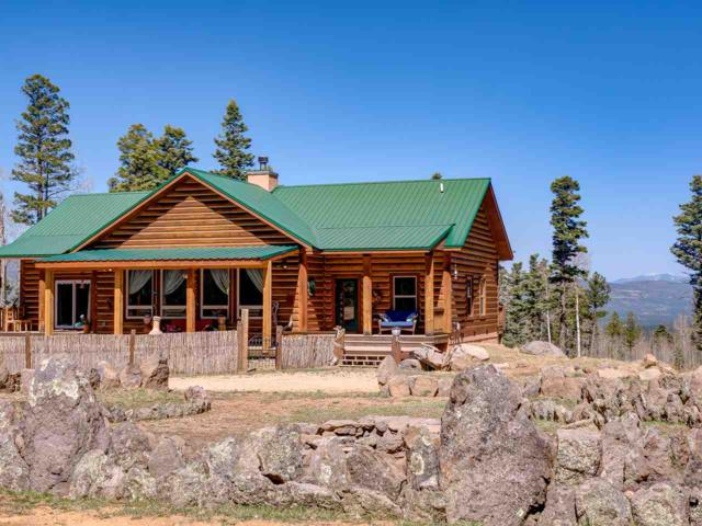 78 Cr B38, Angel Fire, NM 87710 (MLS #101436) :: Page Sullivan Group | Coldwell Banker Lota Realty