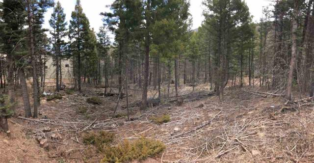 Vail Loop, Angel Fire, NM 87710 (MLS #101447) :: The Chisum Realty Group