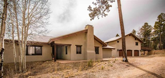 161 Vail Loop, Angel Fire, NM 87710 (MLS #101448) :: The Chisum Realty Group