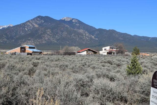 Tract A Mesa Vista, El Prado, NM 87529 (MLS #101451) :: The Chisum Realty Group