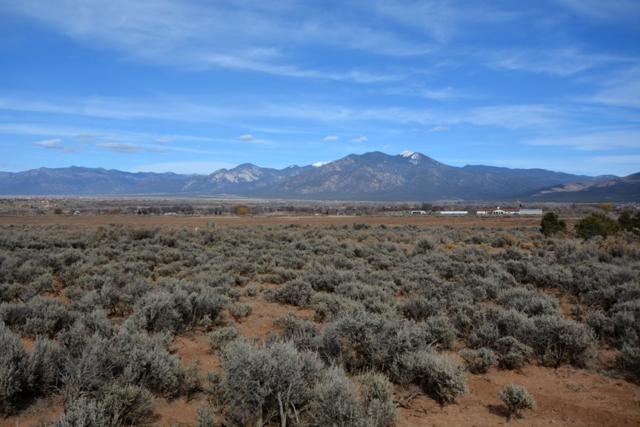TBD Sophia Lane, Ranchos de Taos, NM 87557 (MLS #101460) :: Page Sullivan Group