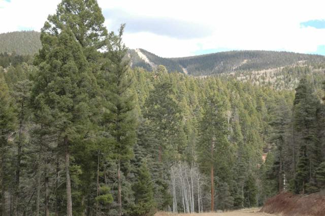 Lot 225 Steamboat, Angel Fire, NM 87710 (MLS #101461) :: The Chisum Realty Group