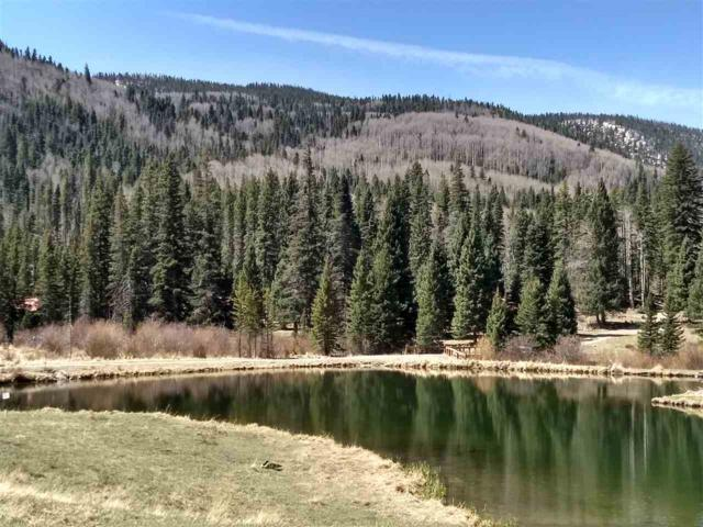 LOTS 118 119 Wheeler Peak Road, Red River, NM 87558 (MLS #101490) :: Page Sullivan Group | Coldwell Banker Mountain Properties