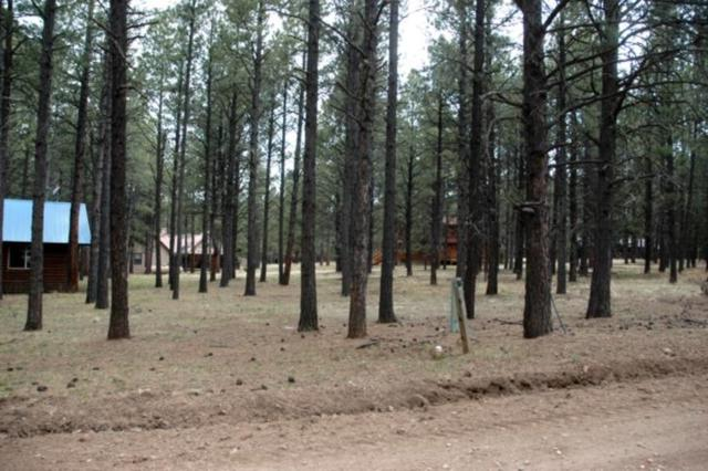 Lot 11, L Knollwood Way, Angel Fire, NM 87710 (MLS #101514) :: Angel Fire Real Estate & Land Co.