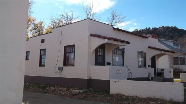525 Galisteo Ave, Raton, NM 87740 (MLS #101539) :: Page Sullivan Group