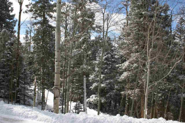 Lot 560 El Camino Real, Angel Fire, NM 87710 (MLS #101553) :: Page Sullivan Group | Coldwell Banker Lota Realty