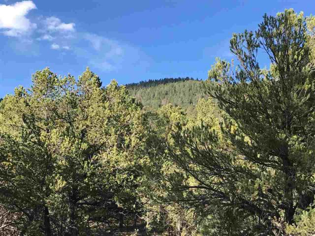Tract A-2 Turkey Springs Road, Valdez, NM 87580 (MLS #101584) :: Page Sullivan Group | Coldwell Banker Mountain Properties