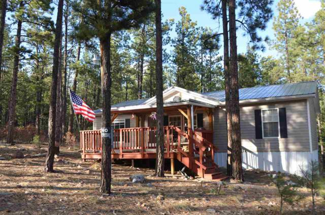 11 Ponderosa Lane, Guadalupita, NM 87722 (MLS #101585) :: Page Sullivan Group | Coldwell Banker Lota Realty