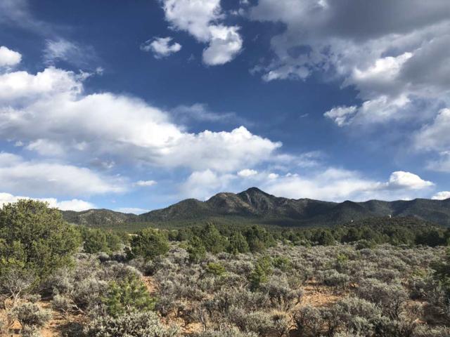 Lot 16 Calle Cumbre, Ranchos de Taos, NM 87557 (MLS #101590) :: The Chisum Realty Group