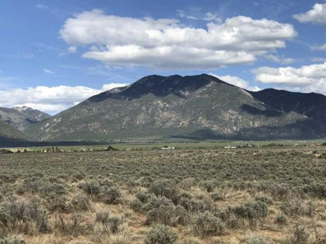 - Mariposa Rd, Arroyo Seco, NM 87513 (MLS #101610) :: Page Sullivan Group | Coldwell Banker Lota Realty